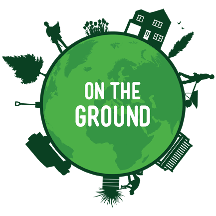 On The Ground Ltd